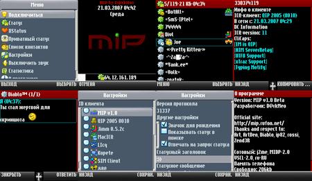 Вид программы MIP